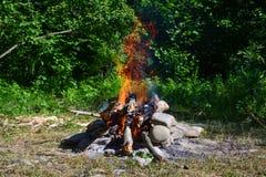 Fuego en bosque Fotografía de archivo libre de regalías