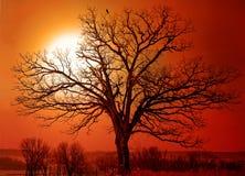 Fuego en cielo Imagenes de archivo