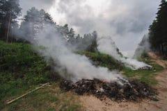 Fuego en el bosque imágenes de archivo libres de regalías