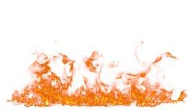 Fuego en el fondo blanco fotografía de archivo libre de regalías