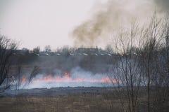 Fuego en el prado Imagenes de archivo
