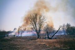 Fuego en el prado Foto de archivo