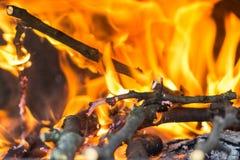 Fuego en la chimenea que quema los palillos de madera imagen de archivo