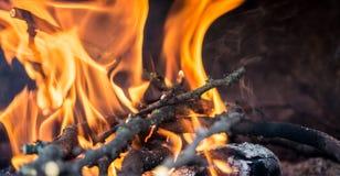 Fuego en la chimenea que quema los palillos de madera fotografía de archivo libre de regalías
