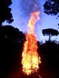 Fuego en la madera Fotografía de archivo libre de regalías