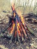 Fuego en la madera Foto de archivo libre de regalías