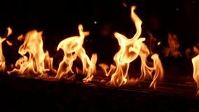 Fuego en la noche almacen de metraje de vídeo