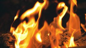 Fuego en la noche en la cámara lenta almacen de video