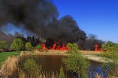 Fuego en la orilla del lago fotos de archivo