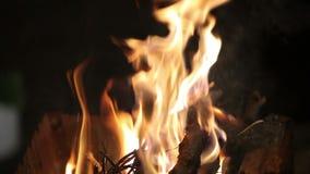 Fuego en la parrilla metrajes