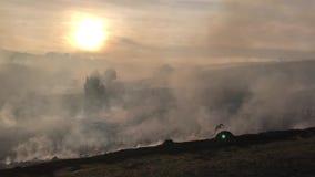 Fuego en la puesta del sol, humo, incendio fuera de control del campo metrajes