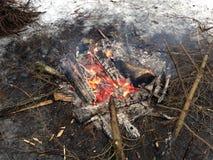 Fuego en las maderas Fotografía de archivo