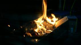 Fuego en las ramas de un árbol en acampar almacen de metraje de vídeo