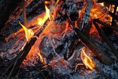 Fuego en modelos misteriosos de madera en un abedul Foto de archivo