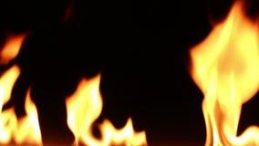 Fuego en negro aislado metrajes