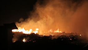Fuego en un campo en la noche almacen de metraje de vídeo