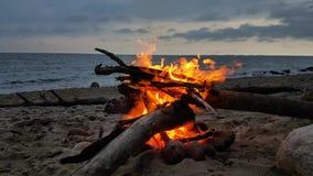 Fuego en una playa en el crepúsculo metrajes
