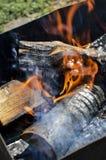 Fuego entre la leña Fotografía de archivo