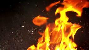 Fuego furioso en el fondo negro - cámara lenta Ii almacen de metraje de vídeo