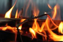 Fuego hermoso en naturaleza Imágenes de archivo libres de regalías