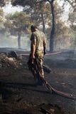Fuego inferior en un bosque de Seich Sou - Salónica, Grecia de la escala Foto de archivo