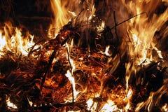 Fuego, llamas en un fondo negro, textura del fuego fotos de archivo