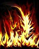 Fuego loco Imagen de archivo
