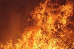 Fuego manejado de la pradera fotografía de archivo libre de regalías