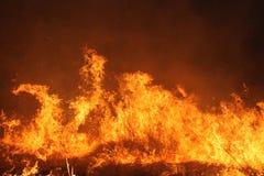 Fuego manejado de la pradera foto de archivo libre de regalías