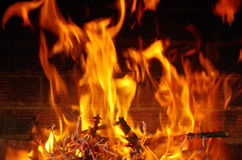 Fuego Phoenix Imágenes de archivo libres de regalías