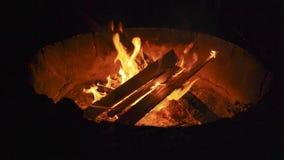 Fuego que acampa en la noche en el verano almacen de video