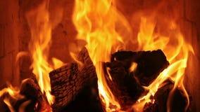 Fuego que quema con las llamas vivas almacen de metraje de vídeo