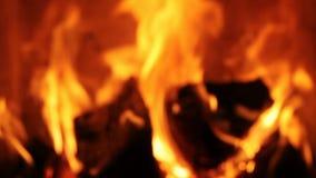 Fuego que quema con las llamas vivas metrajes