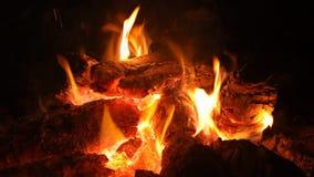 Fuego que quema en el fuego para mantener caliente metrajes