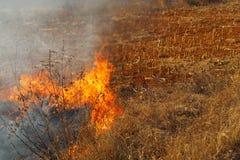 Fuego que quema en tierras de labrantío fotografía de archivo