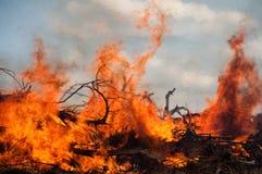 Fuego que rabia Foto de archivo libre de regalías
