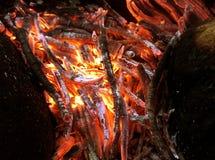 Fuego rojo Fotografía de archivo