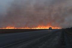 Fuego rojo grande en el campo de hierba seca Fotos de archivo libres de regalías