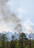 Fuego salvaje Foto de archivo libre de regalías