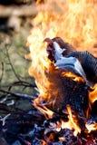 Fuego y calor Foto de archivo libre de regalías