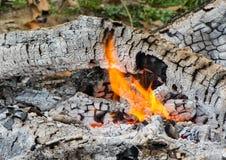 Fuego y carbón de leña quemado Foto de archivo