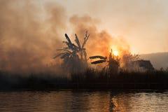 Fuego y humo en campos tropicales Foto de archivo libre de regalías