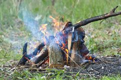 Fuego y humo en el bosque imágenes de archivo libres de regalías