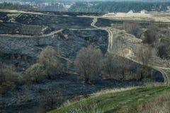 Fuego y humo en el bosque Imagen de archivo libre de regalías