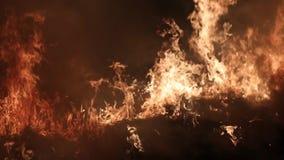 Fuego y humo Fuego en el campo metrajes