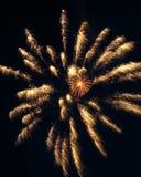 Fuegos artificiales 5 Fotografía de archivo