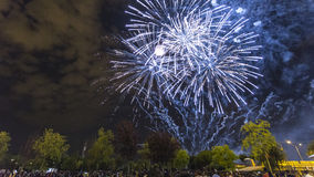 Fuegos artificiales Royaltyfri Bild