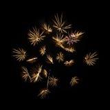 Fuegos artificiales amarillos en fondo negro Imagen de archivo libre de regalías