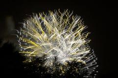 Fuegos artificiales artísticos amarillos Foto de archivo libre de regalías