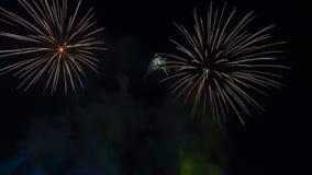 Fuegos artificiales brillantemente coloridos en el cielo nocturno Celebrati del Año Nuevo Fotos de archivo